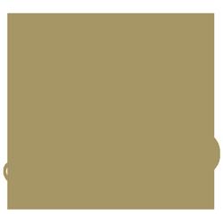 Novias LEO Palma Logo